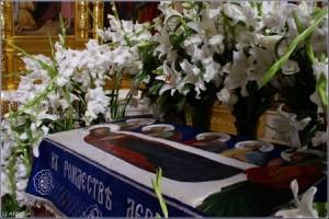 epitaf MD